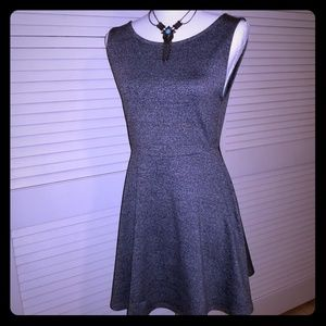 NWT H&M Fit & Flare Gray Dress